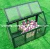 Young Plants를 위한 소형 Greenhouse (