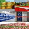最もよい原料が付いている中国のToamtoののりの工場