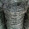 電流を通された鋭いかみそりの有刺鉄線の塀