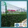 Enduit de poudre de clôtures de jardin d'accueil