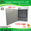 Advanced conçu incubateur d'oeufs de poulet solaire numérique pour la vente