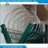 Горячая окунутая гальванизированная колючая проволока бритвы для загородки