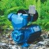Bomba de agua auto eléctrica doméstica del control con el tanque de presión