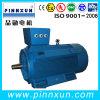 Motor padrão da bomba de água do IEC