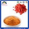 Polysaccharide des Goji Beeren-Auszug-10-50%