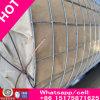 Rica acero inoxidable 316L alambre de malla / pantalla Wiremesh / Mosquito Wiremesh para Windows