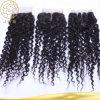Clip humano europeo de la Virgen sin procesar del pelo de la venta al por mayor el 100% de Aaaaaaa en la extensión del pelo