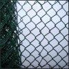 Шестиугольное плетение провода для поднимать цыпленка