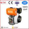 moteur diesel 12HP avec du CE