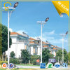 직업적인 Design 80W Street Solar LED Light