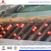 De lage Bal van het Staal van het Tarief van de Breuk Malende in China