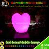Lampe en plastique lumineuse rechargeable de coeur de RVB Chaniging DEL