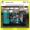 230/400V de geschatte Fabrikant van China van de Generator van het Aardgas van het Voltage