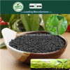 Il carbonio di Kingeta ha basato il fertilizzante composto NPK 18-6-18 per il raccolto