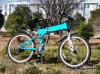 26  pulgadas plegables la bici eléctrica de MTB (RSEB-106)