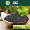 Il carbonio di Kingeta ha basato il fertilizzante composto NPK 15-5-10 per la verdura