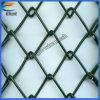 최신 판매 PVC 입히는 체인 연결 철망사 (직접 공장)