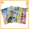 Impresión a todo color del catálogo A4 (OEM-GL047)