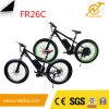 bici eléctrica de 48V 1000W con el neumático de la grasa 26X4