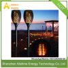 Het zonne Licht van het Gazon van de Tuin van de Straatlantaarn Openlucht met de Batterij van het Lithium