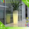 LED Planter 또는 정원 Furniture/LED Flower Pot Light