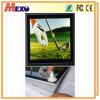Diodo emissor de luz magnético do frame de alumínio que anuncia a caixa leve magro (MSW02-A3L-01)