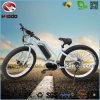 뚱뚱한 타이어 전기 자전거