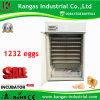 CE haut taux d'éclosion largement approuvé utilisé à bon marché incubateur d'oeufs de poulet