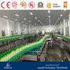 Flasche Conveyor Belts für Filling Production Line