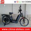 48V Electric Cargo Bike для Heavy Loading (JSE152)