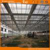 Belle Chambre verte en verre de structure durable de Venlo