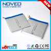 3.7V 2900mAh 328589 Li Polymer Battery Manufacturer