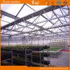 Chambre verte de Multi-Envergure de feuille de polycarbonate de qualité