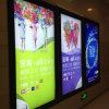 Акриловое СИД рекламируя водоустойчивую тонкую светлую коробку (модель 5050)