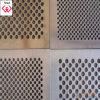 Ячеистая сеть металла Ss Perforated (TYH)