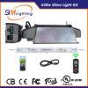 630W CMH wachsen helle Reflektor-Hydroponik wachsen hellen Installationssatz