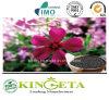 Fertilizzante organico del residuo pieno di nutrizione dei fiori