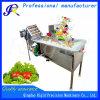 نباتيّ فلكة فقاعات تنظيف آلة [وشينغ مشن] صناعيّ