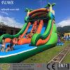 주문을 받아서 만들어진 Design Water Park Adult & Slide를 가진 Kid Inflatable Pool