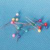 着色されたプラスチック真珠ヘッドPin (QX-PP003) 4*15/4*24/4*38/4*46/4*55mm