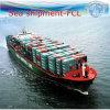 各戸ごとの完全な容器サービス、国際海運(FCL 20  40 )