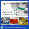 11061-68-0 regular Blood Sugar Level Recombinant Human em Sulin