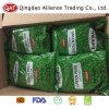 Des pois verts congelés dans le carton pour l'exportation