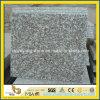 Polished G664 Bainbrook Brown Granite for Wall or Floor Tile
