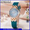 Reloj ocasional de las señoras del cuarzo de la correa de cuero de la manera (Wy-121D)