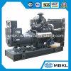 200kw/250kVA de diesel Diesel die van de Macht Reeks met Chinees Merk Shangchai produceren