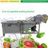 De multifunctionele Machine van de Wasmachine van de Was van het Fruit van het Roestvrij staal Plantaardige