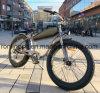 원조 Velo Ectrique 250W/500W/750W 포도 수확 함 E 자전거 또는 Harley 전기 자전거 또는 바닷가 함 전기 뚱뚱한 자전거 또는 향수 뚱뚱한 Pedelec/26X4 Pedelec 세륨
