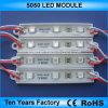 L'alta qualità esterna impermeabilizza un modulo 12V dei 5050 LED
