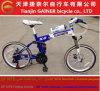 Projeto elegante de dobramento da bicicleta MTB do Gainer 20 de Tianjin de